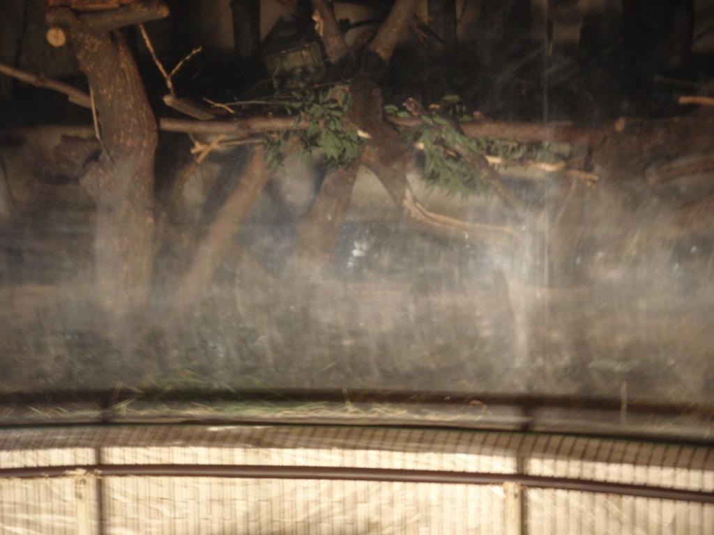 アクリル 傷 曇り くもり 黄ばみ 傷消し 研磨 再生 修復 ポリカ